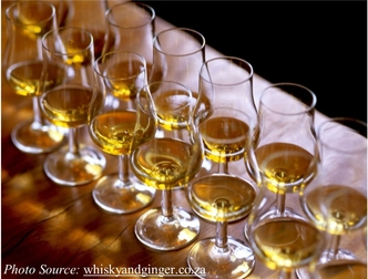 Several whiskey tasting glasses in two rows