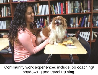 Young girl with a dog sitting on a desk. Community work experiences include job coaching/shadowing and travel training.