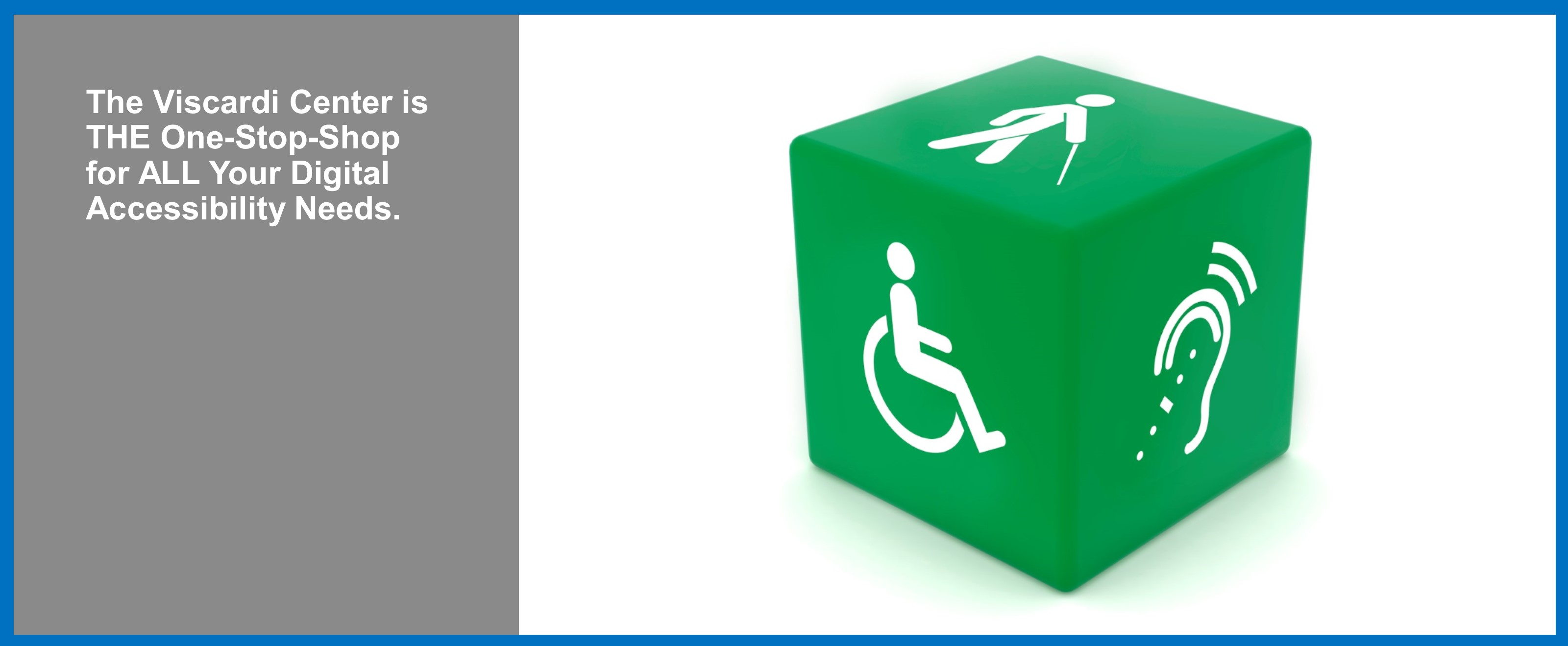 The Viscardi Center is THE One-Stop-Shop for ALL Your Digital Accessibility Needs.